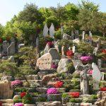 自然聖殿の開発